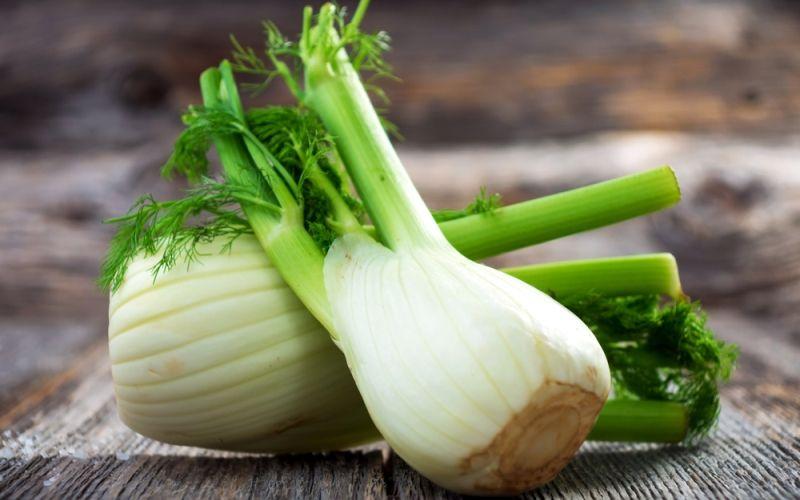 Фенхель: польза, состав, противопоказания и использование в кулинарии